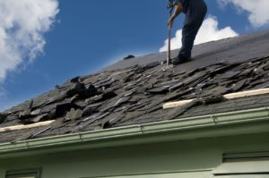 12576928 - removing old shingles to prepare a roof for a new installation with blue sky