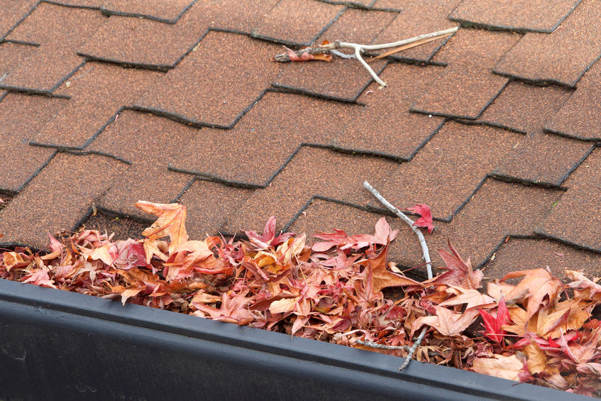 Fort Worth roofing contractor will clean your gutters and roof
